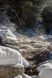 Канадская сцена водопада зимы стоковое фото rf