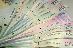 канадские деньги Стоковое Изображение