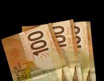 канадские деньги стоковое изображение rf