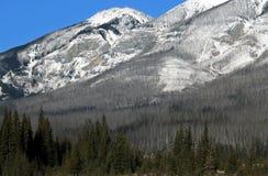канадские rockies Стоковая Фотография RF