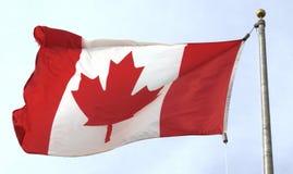 канадский флаг Стоковые Фотографии RF