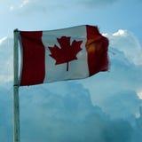 канадский флаг Стоковые Фото