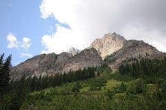 Канадский холм Rockies стоковые фотографии rf