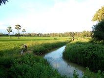 Канал в полях Стоковые Фото