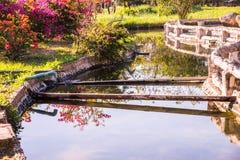 Канал горячей воды на горячем источнике Sankamphaeng стоковое изображение rf