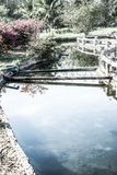 Канал горячей воды на горячем источнике Sankamphaeng стоковое фото