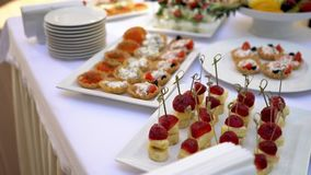 Канапе сыра моццареллы, томаты вишни Tartlets с икрой сток-видео