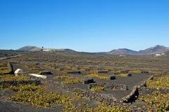 Канарские острова lanzarote Испания Стоковое Фото