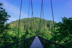 Канатный мост на озере Стоковое фото RF