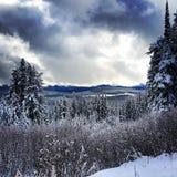 Канада, до Рождества Христова, bigwhite Стоковая Фотография RF