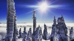 Канада, до Рождества Христова, bigwhite Стоковое Изображение