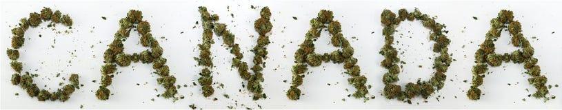 Канада сказала по буквам с марихуаной стоковая фотография