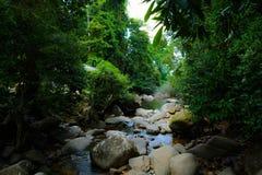 Канал водопада Стоковое Фото