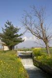 Канал между 2 деревьями Стоковая Фотография RF