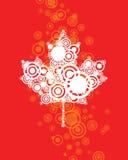 Канадская предпосылка листьев Стоковая Фотография