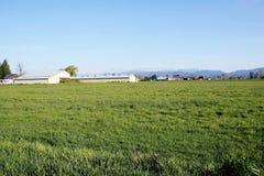 Канадская страна фермы Стоковые Фотографии RF