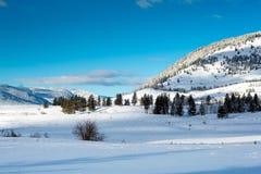 Канадская сцена зимы Стоковая Фотография RF