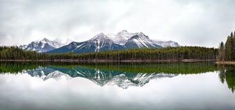 Канадские горы скалистых гор отразили в воде Стоковые Изображения