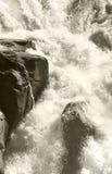 Канадский ландшафт в падениях Athabasca альбатроса Канада стоковое изображение rf