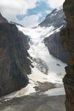 Канадский ландшафт в равнине 6 ледников альбатроса Канада стоковое фото rf