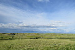 Канадский ландшафт прерий Стоковое Фото