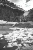 Канадский ландшафт с держателем Эдитом Cavell яшма альбатроса стоковое изображение rf