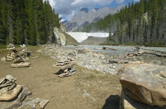 Канадский ландшафт с лесом и падениями Wapta альбатроса стоковое фото
