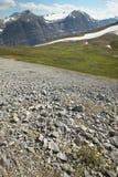 Канадский ландшафт с ледником Бульвар Icefields альбатроса смогите стоковые изображения rf