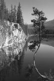 Канадский ландшафт с озером и деревом альбатроса Канада стоковые фотографии rf