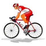 Канадский велосипедист дороги Стоковые Изображения