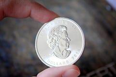 Канадский стог серебряной монеты кленового листа Стоковая Фотография RF
