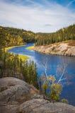 Канадский след 3 леса Стоковые Фото