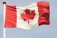 Канадский флаг 02 Стоковое фото RF