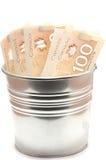 100 канадских долларовых банкнот Стоковое Изображение RF