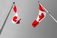 2 канадских флага Стоковое фото RF