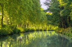 Канал du Midi, отражение деревьев явора в воде, Франции Стоковая Фотография