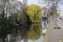 Канал Mauritskade городка, Гаага, вертеп Haag, Нидерланды Стоковое Изображение