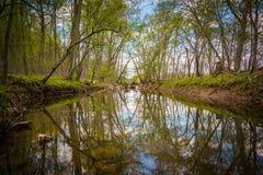 Канал Patowmack на больших падениях парке, Вирджинии Стоковое фото RF