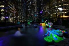 Канереечные света зимы причала стоковая фотография rf