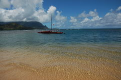 кане пляжа красивейшее Стоковое Изображение RF