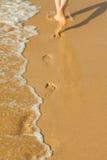 Каникула на береге моря стоковая фотография rf