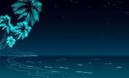 Каникулы моря прогулки ночи Seashore Небо романтичного побережья отдыха перемещения свадьбы даты песочного звёздное Океан Palm Be Стоковые Изображения