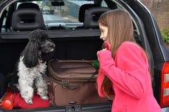 Каникула с собакой стоковая фотография rf