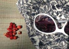 каникула территории лета katya krasnodar стоковые изображения