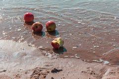 Каникулы на пляже Стоковые Изображения
