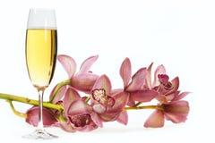 каннелюра шампанского Стоковые Фото