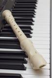 Каннелюра на синтезаторе Стоковое Изображение RF