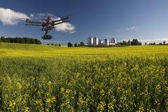 Канола воздушный патруль Стоковая Фотография