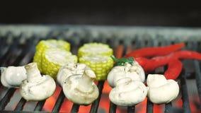 Кантуют зажаренные овощи, цыпленка отрезанный в части champignants чеснока и перец chili со схватами утюга дальше сток-видео