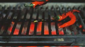 Кантуют овощи, цыпленка отрезанный в части champignants чеснока и перец chili со схватами утюга на гриле сток-видео